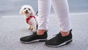 The Shoe Shop summer shoes image